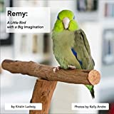 img - for Remy: A Little Bird with a Big Imagination book / textbook / text book