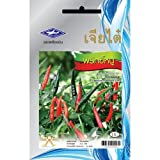 Thai Hot Pepper Chili (90 Seeds Per Package) - From Chai Tai, Thailand