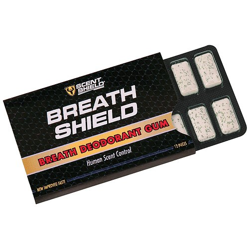 Why Should You Buy Scent Shield Men's Deodorant Gum (Green, 12-Count)