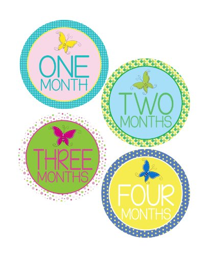 Butterfly Monthly Onesie Stickers for a baby girl - Waterproof and Durable - Includes 1-12 Month Stickers