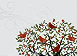 Festive Birds Deluxe Holiday Boxed Cards