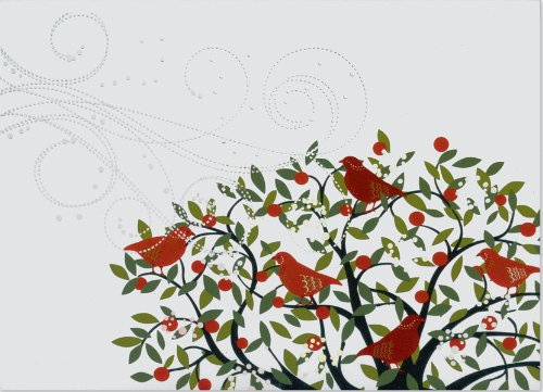 Festive Birds Deluxe Holiday Boxed Cards PDF