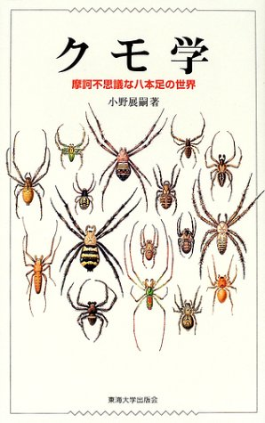 クモ学—摩訶不思議な八本足の世界