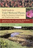 Field Guide to Tidal Wetland Plants of the Northeastern United States and Neighboring Canada: Vegetation of Beaches, Tidal Flats, Rocky Shores, Marshes, Swamps, and Coastal Ponds