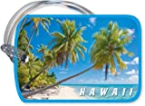 Palm Trees & Perfect Beach by Michael & Monica Sweet - Hawaiian Art Luggage Tag