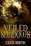 Veiled Shadows: (A Paranormal Demon Haunting) (Shadows Series Book 3)