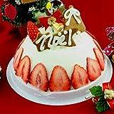 クリスマスアイスケーキ パンナ&ストロベリー