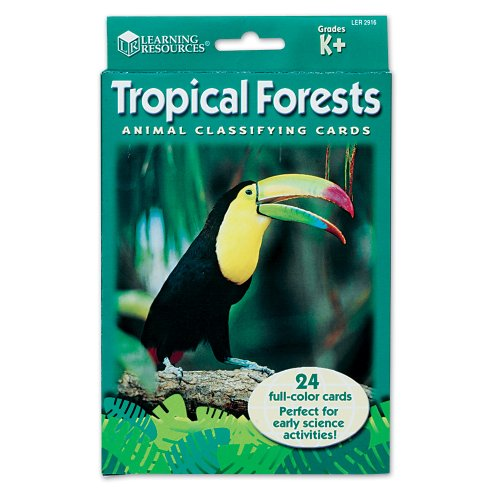 Learning Resources Animal Classifying Cards, Tropical Forests - 1