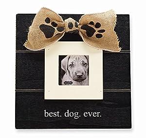 Amazon Com Mud Pie Best Dog Ever Frame