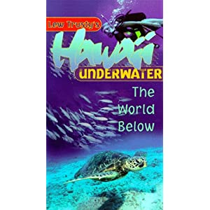 Hawaii Underwater movie