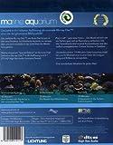 Image de Marine Aquarium: Special Collector's Edition [Blu-ray] [Import allemand]