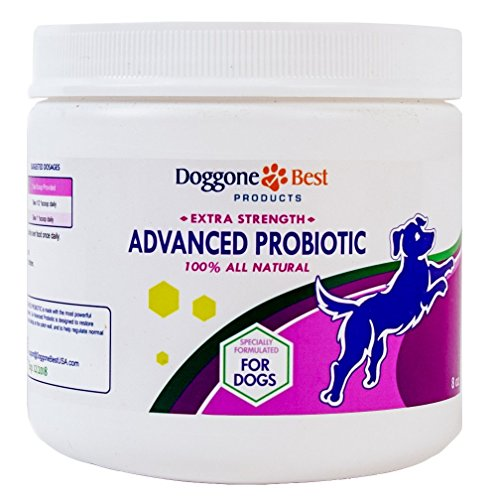 Best Dry Dog Food To Prevent Diarrhea