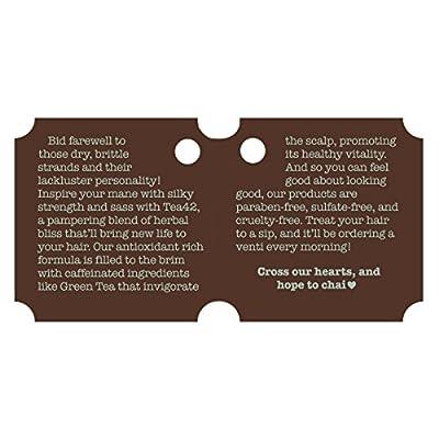 Premium Caffeine Shampoo Made From Organic Green Tea Extract 12 oz, by Tea42