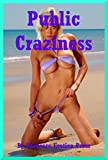 img - for Public Craziness: Five Extreme Public Sex Erotica Stories book / textbook / text book