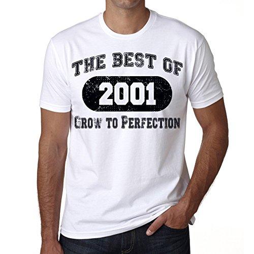 Regalo di compleanno The Best Of 2001 maglietta uomo, regalo, Tshirt uomo