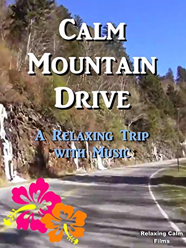 Calm Mountain Drive: A Relaxing Trip with Music