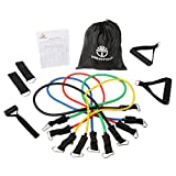 WenTop® Resistance Band Set Detachable Heavy Duty Resistance Bands Workout Bands with Door Anchor, Ankle Strap, Exercise Chart, and Resistance Band Carrying Case for Fitness and Exercise
