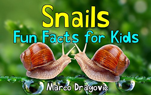 Snails: Fun Facts for Kids, Picture Books for Kids (Hermaphrodite Picture compare prices)