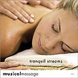 echange, troc Various Artists - Musical Massage: Tranquil Streams