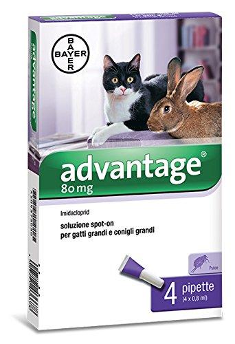 bayer-advantage-spot-on-80-gatos-traves-kg4-pieza-1-stk