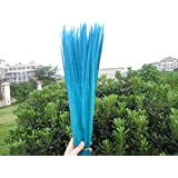 Maslin 10 Pieces of Natural Multicolor Pheasant Feather, Long 50-55cm DIY Hand Feather Decoration Stage Party Props - (Color: Sky Blue) (Color: sky blue)