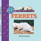 101 Facts About Ferrets