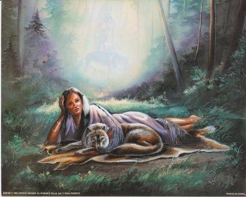 Daydream Native American Wolf Fine Art Print Poster (16x20)