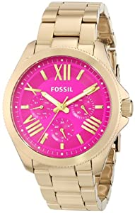 Fossil Women's AM4539 Cecile Analog Display Analog Quartz Silver Watch