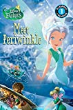 Disney Fairies: Meet Periwinkle (Passport to Reading Level 1)