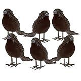 Halloween Black Feathered Small Crows - 6 Pc Black Birds Ravens Props Décor Halloween Decorations Birds