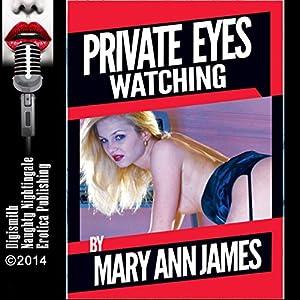 Private Eyes Watching Audiobook
