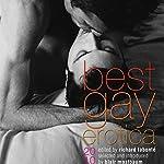 Best Gay Erotica 2010 | Richard Labonte