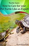 Turtle Care: How to Care for Pet Turtles Like an Expert  (Aquarium and Turtle Mastery Book 5)