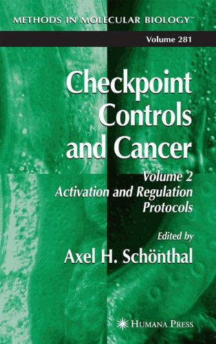 Checkpoint Controls And Cancer, Vol. 2: Activation And Regulation Protocols (Methods In Molecular Biology, Vol. 281)