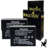 Two Halcyon 1600 mAH Lithium Ion Replacement Battery for Panasonic Lumix DMC-G5KK 16.1MP Mirrorless Camera and Panasonic DMW-BLC12