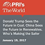 Donald Trump Sees the Future in Coal. China Sees the Future in Renewables. Who's Making the Safer Bet? | Peter Thomson