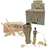 Egypt Mummy Excavation Kit