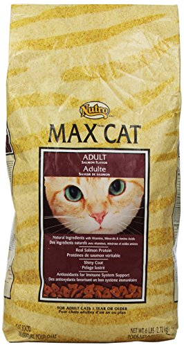 Max Cat Adult Salmon Flavor Food, 6-Pound