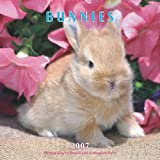 Bunnies 2007 Mini Calendar (142160468X) by Browntrout Publishers