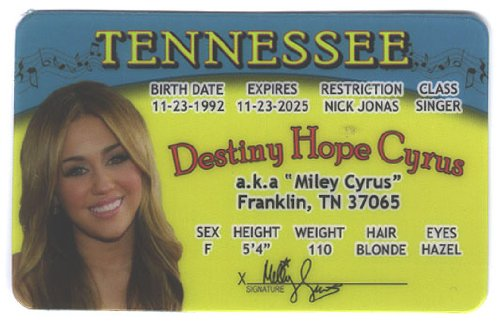Miley Cyrus Fun Fake ID License