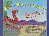 img - for Baby Rattlesnake/Viborita De Cascabel book / textbook / text book