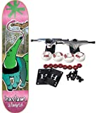 Almost COMPLETE SKATEBOARD Chris Haslam Anteater 8.25