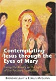 Contemplating Jesus Through The Eyes of Mary: Living the Rosary in the light of Focolare Spirituality
