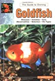 The Guide to Owning Goldfish