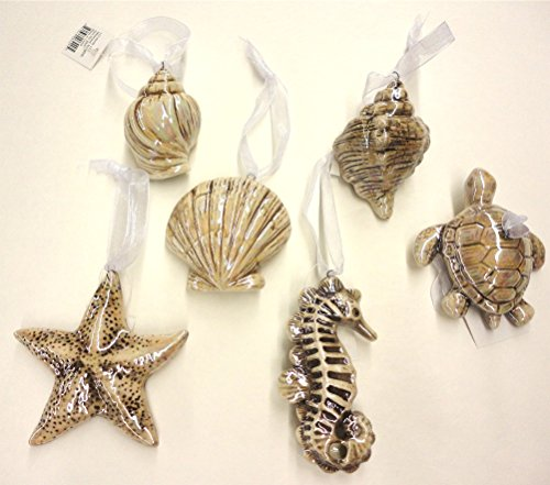 6 Seashell Christmas Ornaments Ribbon Hanger
