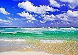 【A3サイズミニポスター】 蒼海と砂浜(A) POSA3-061 (42.0×29.7cm)
