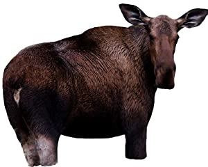 Montana Decoy Moose Ii Cow Decoy by MONTANA DECOY