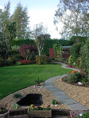 Lawn edging, Recycled Plastic Edging for 'neat edge' perfect for lawns, paths, edges, gravel, Heavy Duty strimmer resistant and enviro Lawn Edging, selection of Black lawn edging in a range of lengths and thicknesses and depths