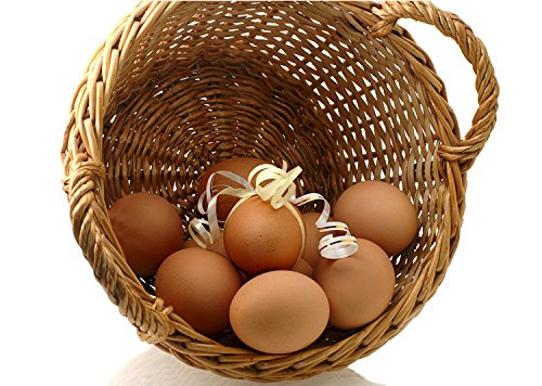 Easter eggs wooden fake eggs 9 pieces nature log color for Artificial logs for decoration