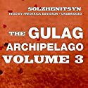 The Gulag Archipelago: Volume III: Katorga, Exile, Stalin Is No More Audiobook by Aleksandr Solzhenitsyn Narrated by Frederick Davidson